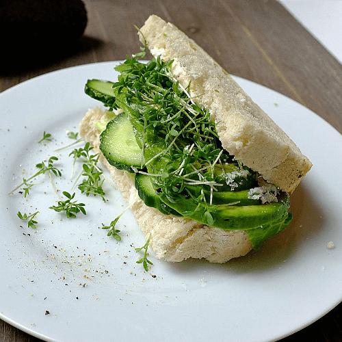 Leckeres Avocado-Gurken-Sandwich